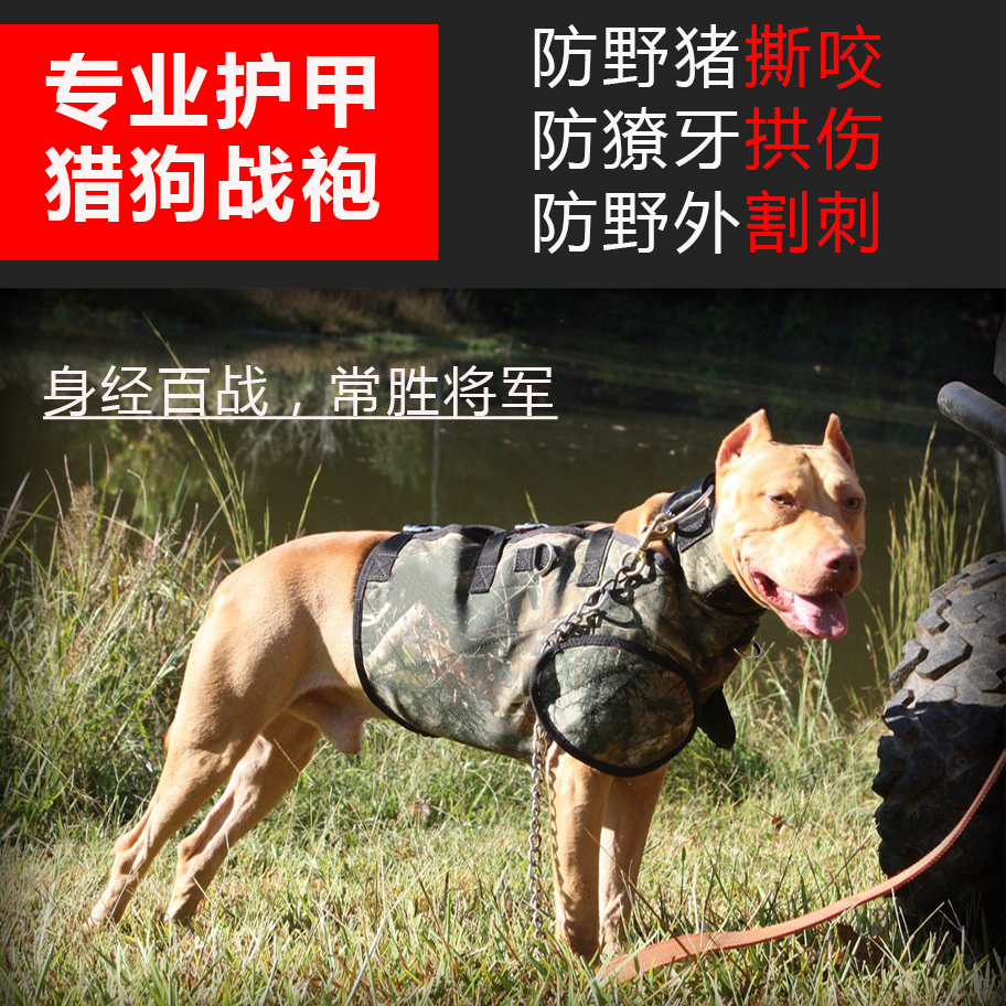 Bitdog armor Bulldog new products 2019 hound protective clothing boar clothing autumn