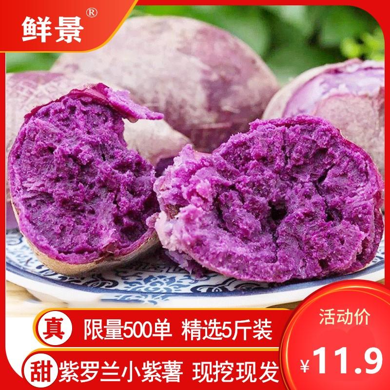山东现挖紫薯新鲜净重5斤香蜜甜薯农家板栗红皮地瓜当季蔬菜番薯
