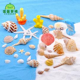 鱼缸贝壳海螺摆件装饰品地中海拍摄道具微景观扇贝仿真海星珊瑚