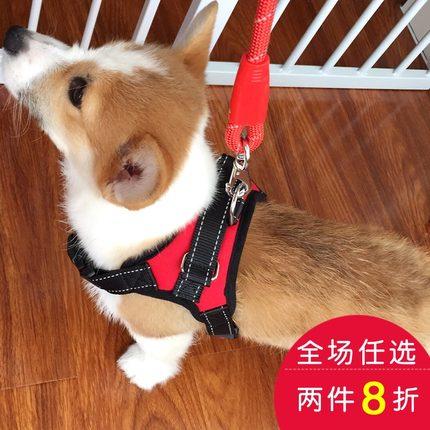 胸背带小狗狗牵引绳 背心式遛狗绳 中型小型犬柯基宠物用品狗链子