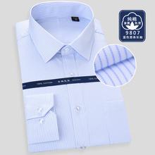 长袖 商务休闲工装 液氨免烫全棉职业白衬衣 新款 纯棉白底蓝条男衬衫