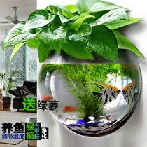 创意墙面装饰客厅餐厅卧室墙壁墙上装饰品壁挂花盆壁挂鱼缸水培