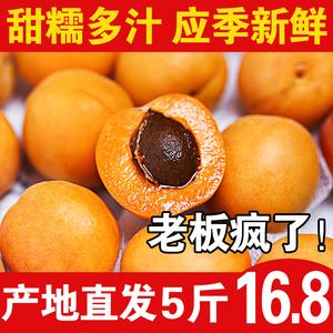 领3元券购买新鲜杏子应季酸甜大杏子孕妇水果
