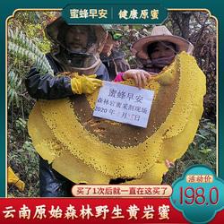 真正悬崖采的岩蜜悬崖蜜来自原始森林的野生蜂蜜黄岩蜜黑岩蜜都有