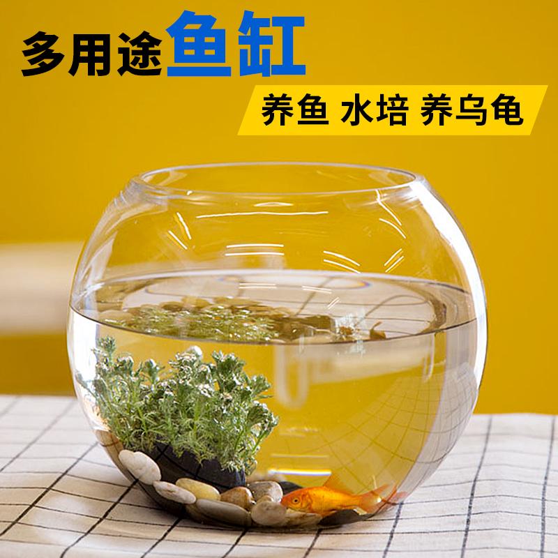 包邮透明玻璃花瓶 绿萝水培花瓶 简约花瓶 圆形水培鱼缸 金鱼缸