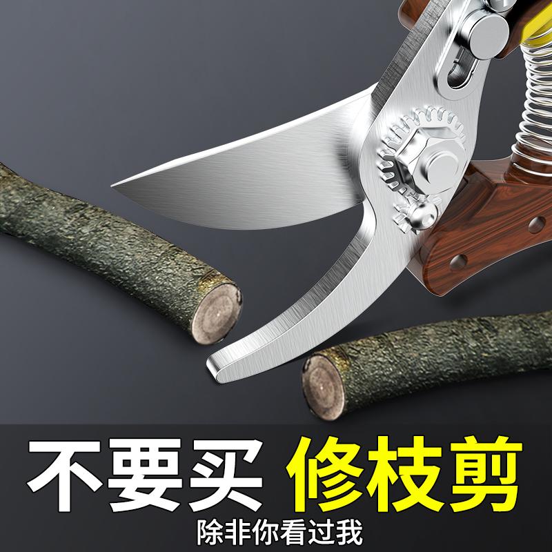 剪枝果树修枝剪刀园艺修剪树枝园林省力修花枝剪家用强力剪子神器