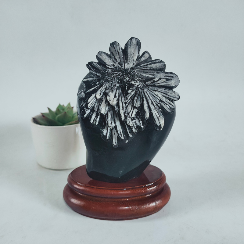 New products come to market fresh bogujia strange stone chrysanthemum stone original stone collection ornaments manufacturers direct mail package