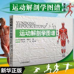 正版包邮 运动解剖学图谱修订第3版 肌肉塑造教程全书 人民体育健身书籍 健美训练图解 顾德明 医学实用性人体图谱 运动生理学
