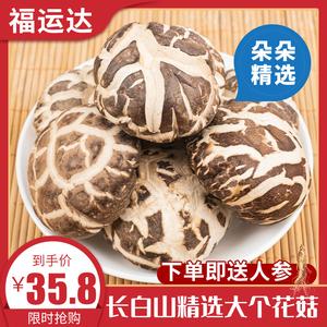 东北椴木大花菇干货特级长白山干香菇蘑菇菌菇散装250g包邮非野生