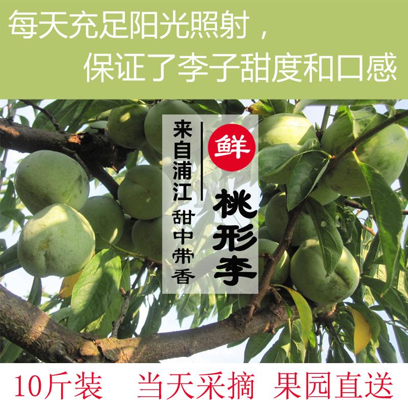 10斤装正宗浦江桃形李子特产新鲜脆甜心李子包邮现摘现发当季水果