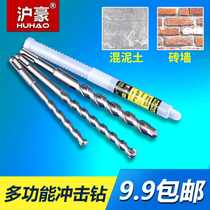 Shanghai Hao Electric Hammer bit two pits two groove garden handle impact drill bit through wall cement concrete construction bit
