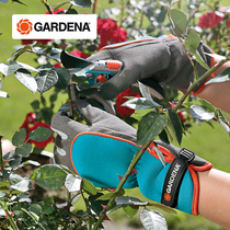Germany imports Gardena to thicken anti-thorn anti-tie rose season shrub horticultural trim Gloves
