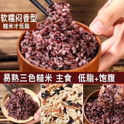 健身低脂三色糙米饭新米粗粮主食五谷杂粮组合代餐紫米孕妇粥5斤