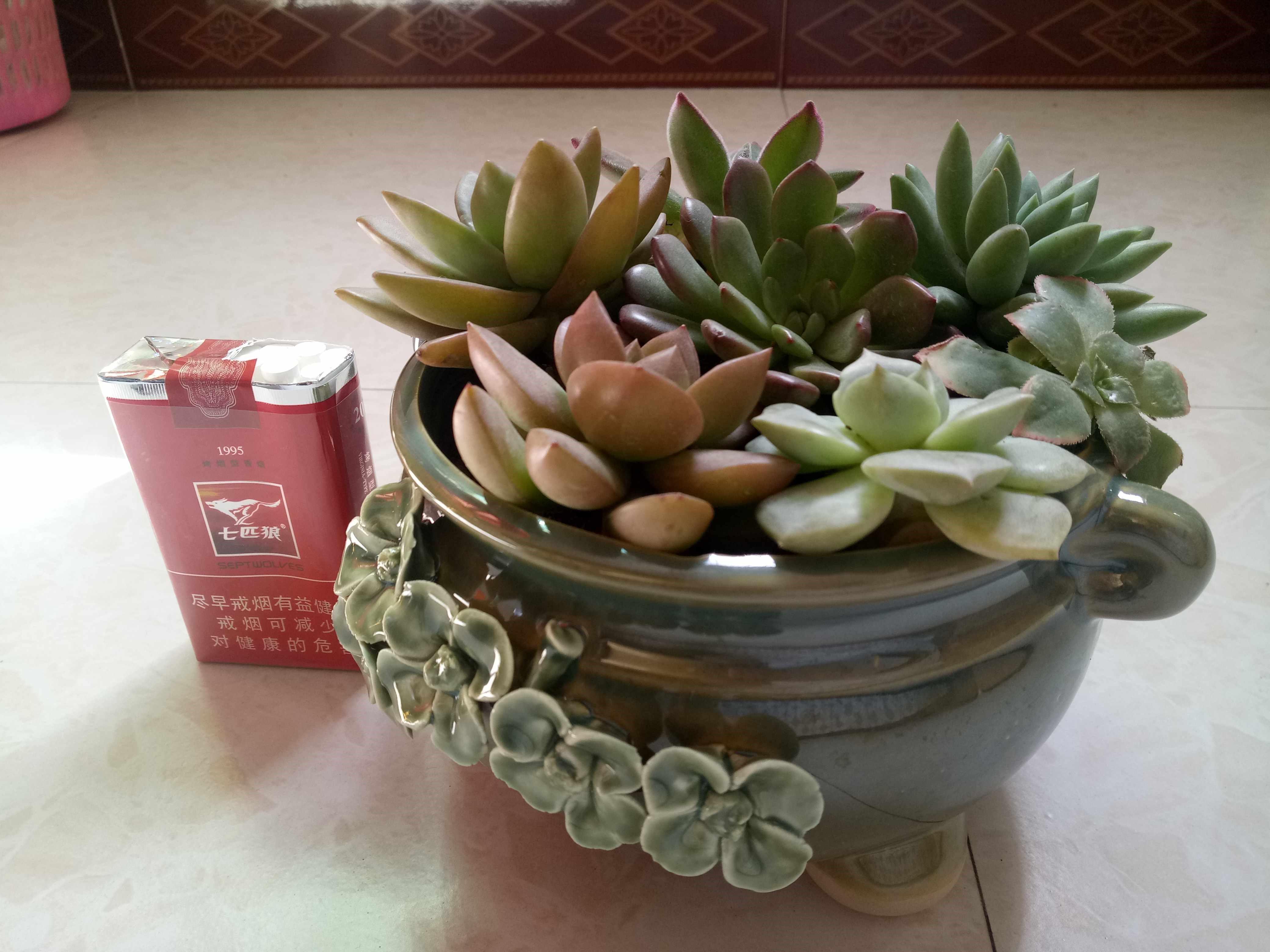 多肉植物花盆手工大口径客厅多肉肉陶瓷创意家居便宜摆件限时特价