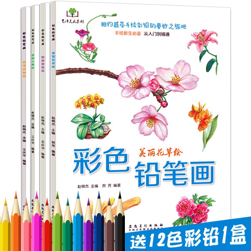 4册套装 彩色铅笔画 花草水果美食动物手绘画彩铅画入门教程书 素描绘画教程 儿童成人画画美术教材 教你画彩色铅笔画涂鸦铅笔基础