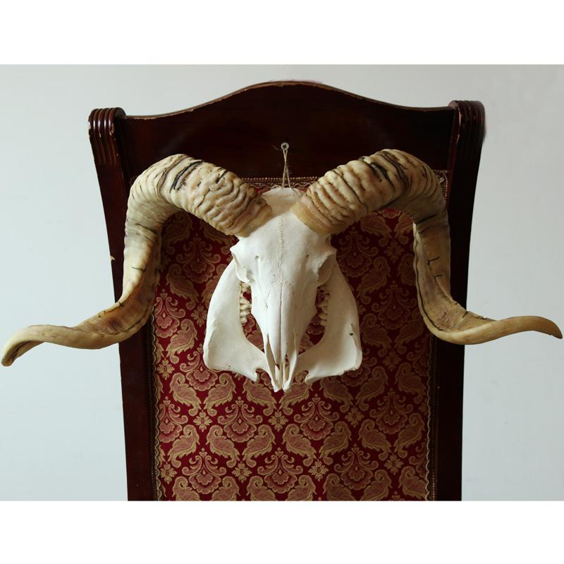 Прямой черепанский череп стандартный Декоративные украшения ручной работы украшают персонализированные орнаменты