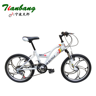 20 inch 12 speed X type front and rear V brake mountain bike brand Tianbang mountain bike Speed bike student car