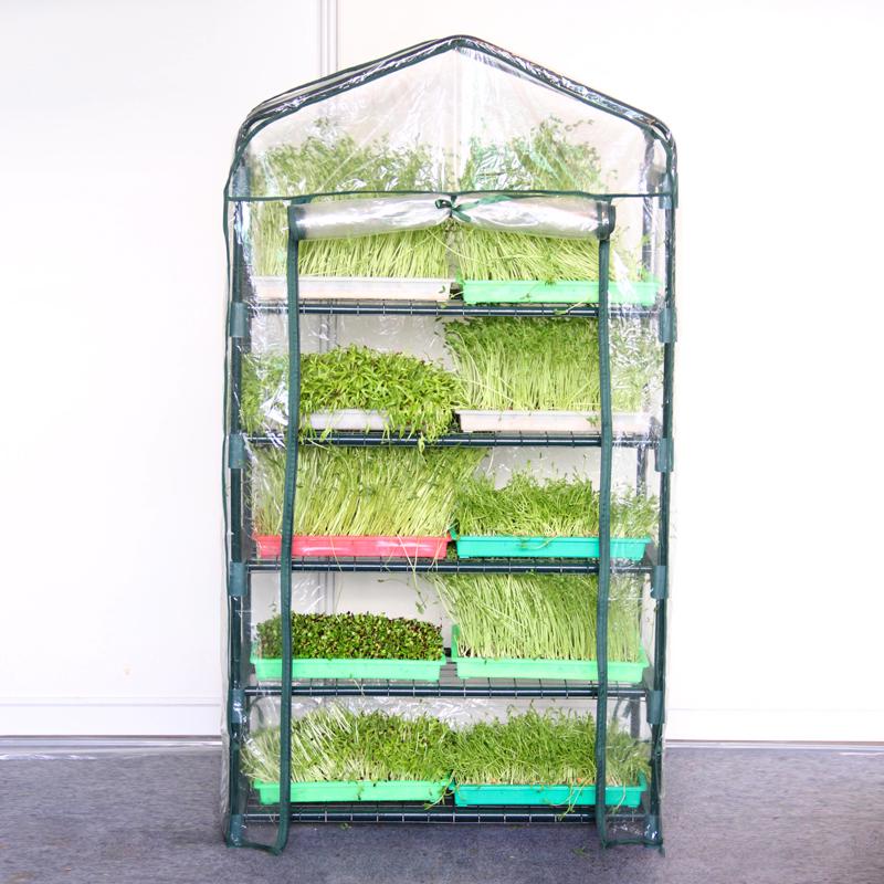 家庭阳台纸上种菜芽苗菜育苗盘无土栽培蔬菜设备豆芽菜种植盘暖房