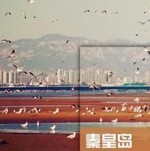 河北秦皇岛旅游地图攻略(电子版)2021年自助游自由行旅游指南