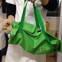 Кот использование страхование фиксированный пакет фиксированный пакет кот пакет кот мешок рыть ухо подача медицина борьба игла потерять жидкость ножницы ноготь бесплатная доставка