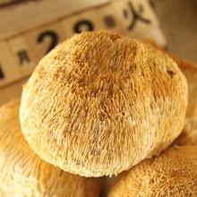 邑珍猴头菌菇猴头蘑干货500g
