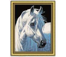 Manufacturers selling colorful DIY digital painting Cartoon characters hand-painted wholesale 30 * 40 white horse