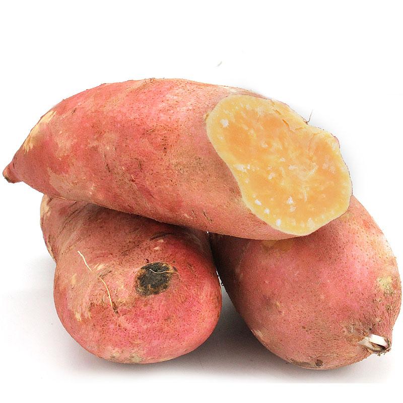 拾蘑菇 云南新鲜红薯红砂土甜香沙地红心地瓜小香薯苕 5斤