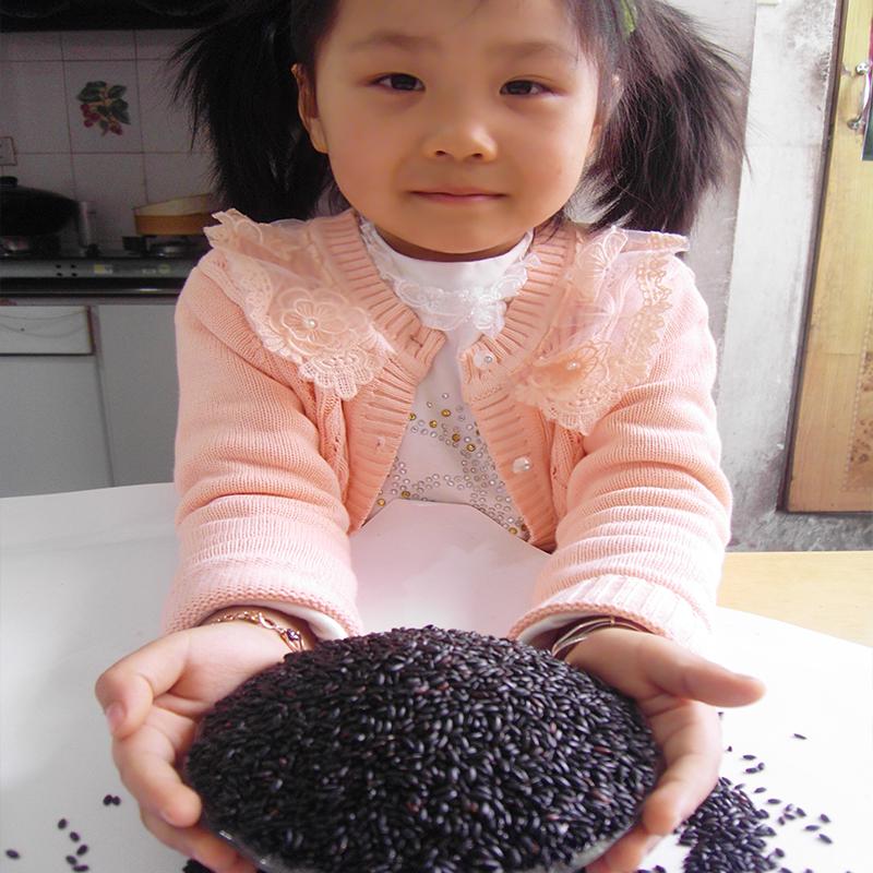 2017年新米正宗东北黑米五谷杂粮粥米农家自产黑龙江五常紫米香米
