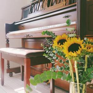 立式钢琴韩国原装进...