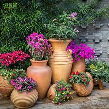Цветы, садоводство > Садовый дизайн услуги.