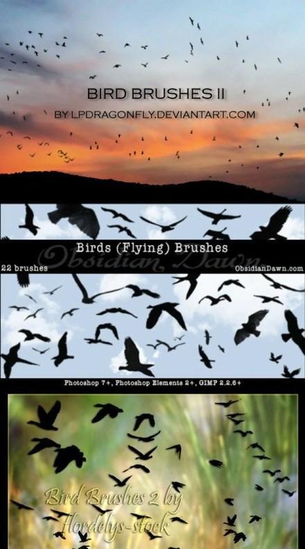 PS brush brush brush brush bird Brush Collection (25 sets)