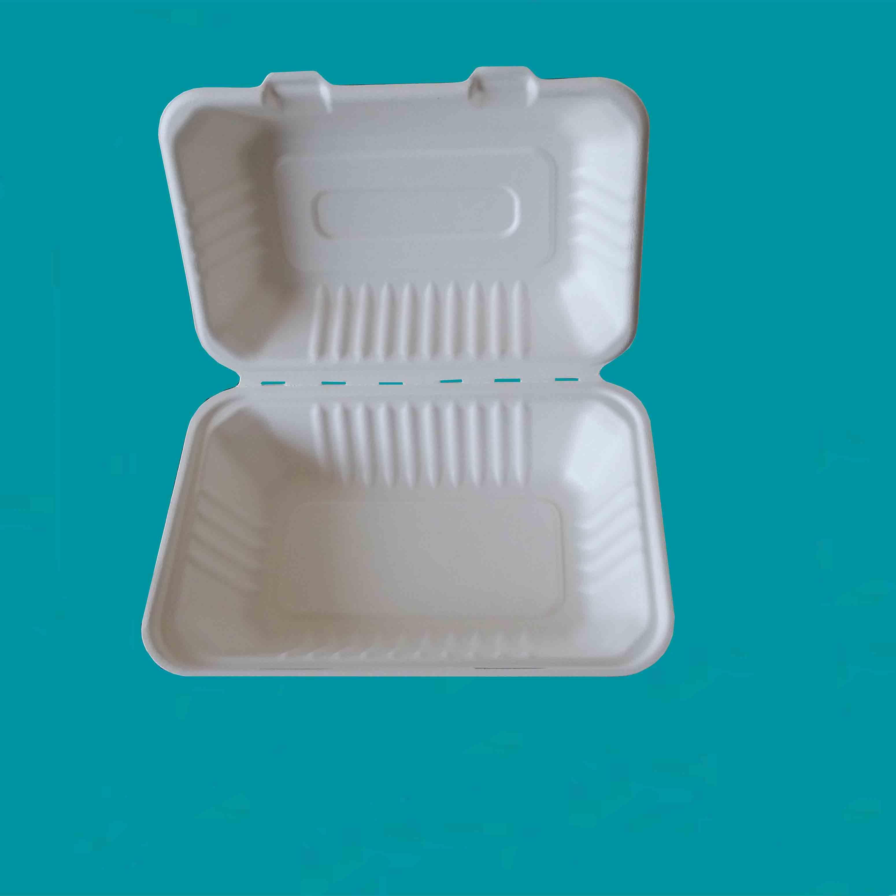 一次性餐具--适用于饭店外卖送餐用打包饭盒(800ml)9*6餐盒
