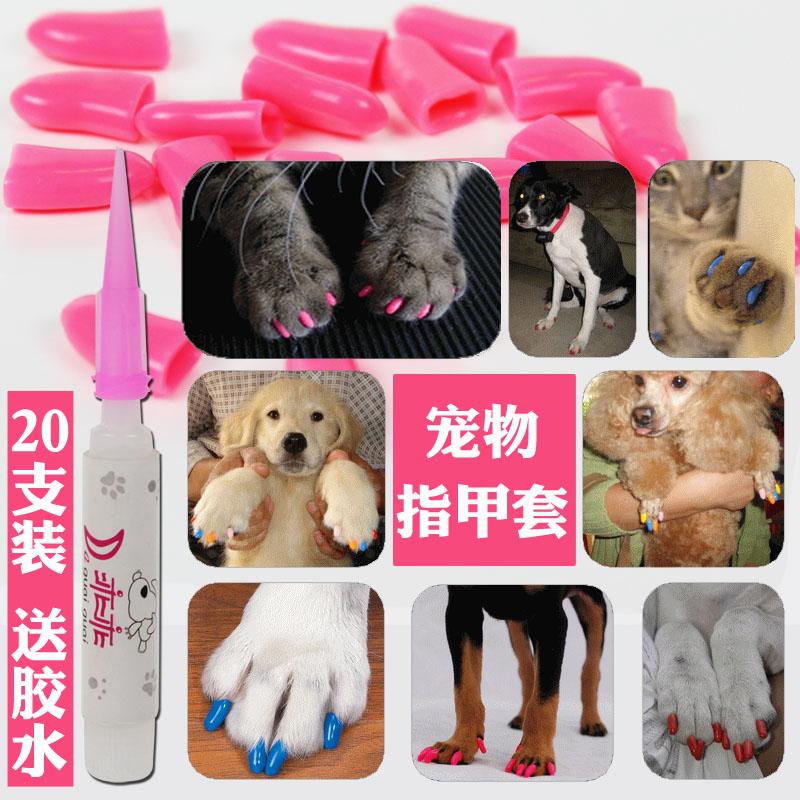 Домашнее животное тедди собака ноготь против улов травма китти ноготь крышка кошачий против кот улов 20 фуражного зерна клей