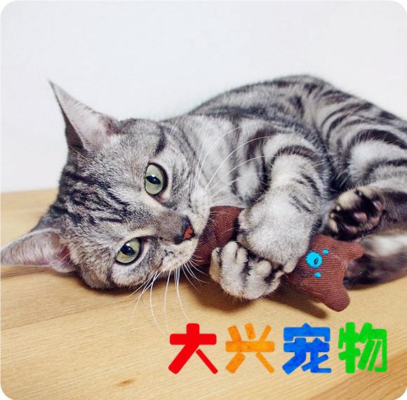Япония super cat мультики большой палец руки китти кот мята подушка кот трава кот статьи игрушка молярный молодой кот