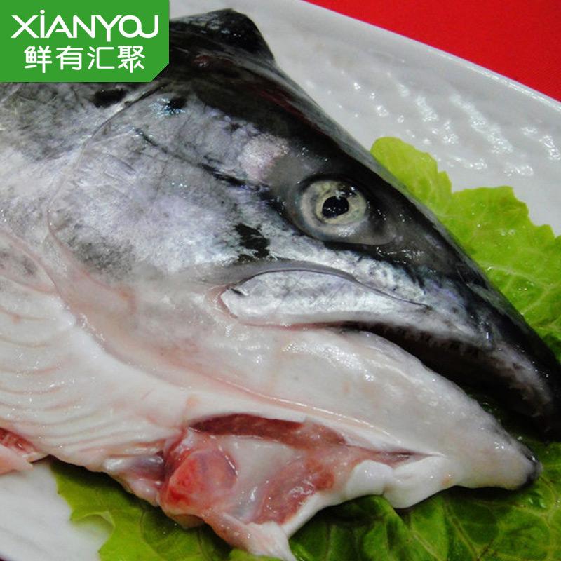 【鲜有汇聚】进口新鲜三文鱼头600克 烧烤 炖汤 每天现杀