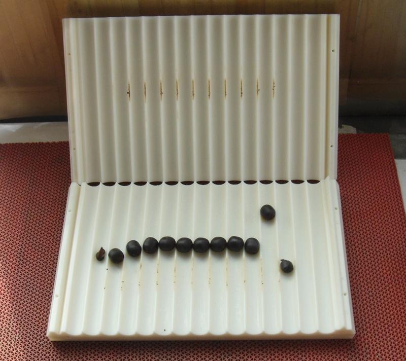 中要丸大蜜丸制丸机手工搓丸板配木板制条9g约22mm