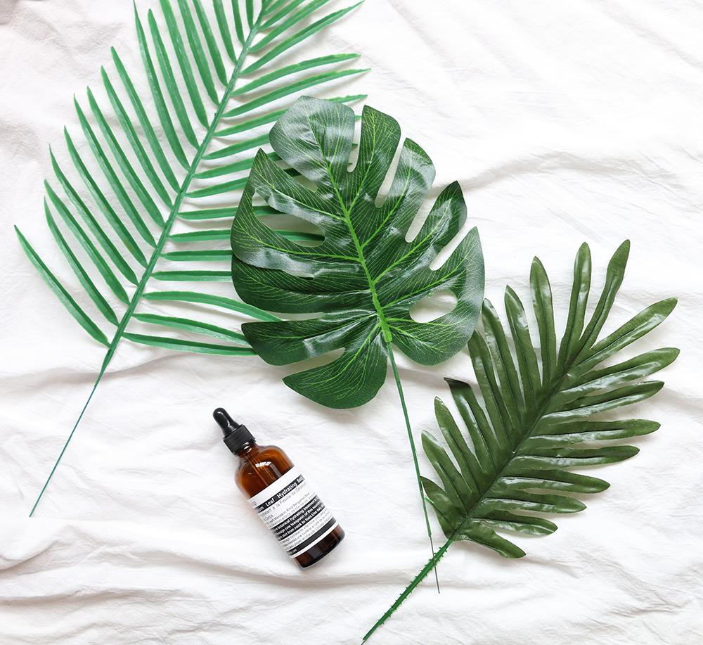 Ins стиль моделирование зеленый завод черепаха задний лист фотография реквизит украшение простой декоративный зеленые листья фотографировать реквизит