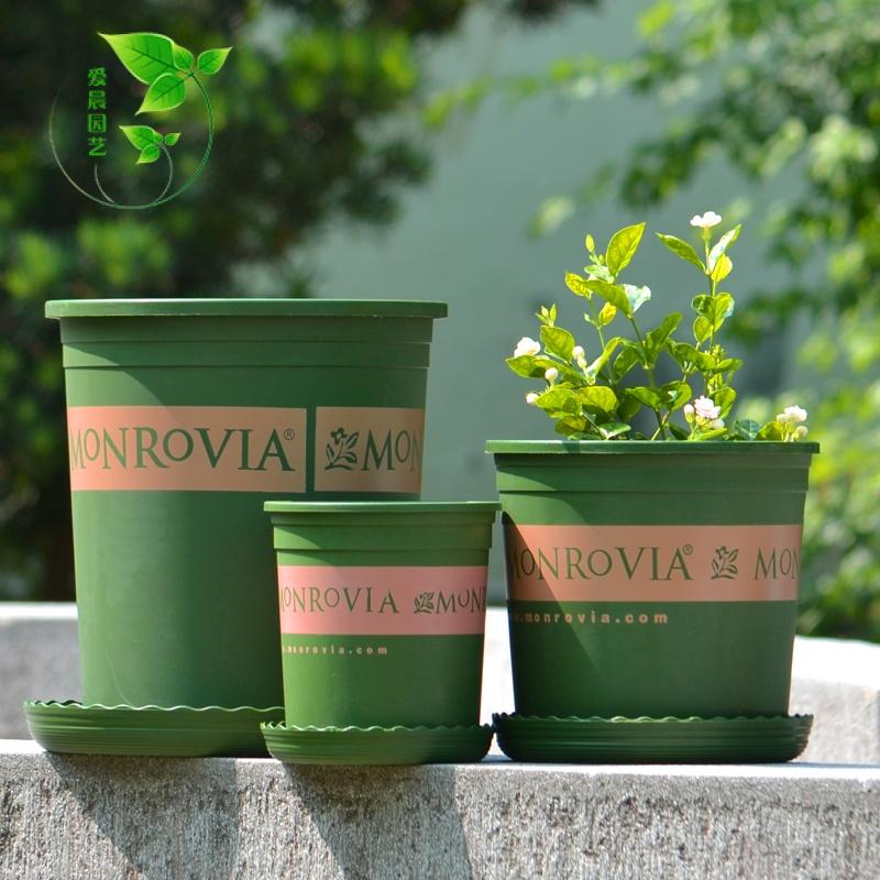 经典加仑花盆多肉塑料树脂创意阳台种菜盆栽欧式简约绿萝兰花包邮