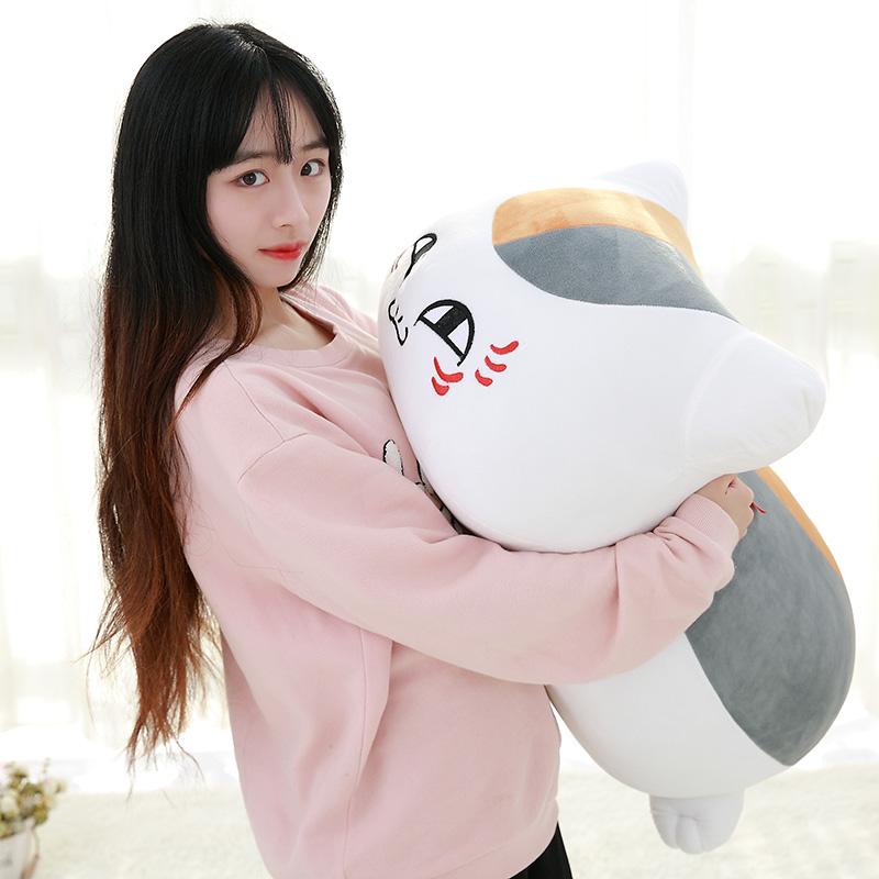 Лето глаз друг вклад китти учитель плюш кукла мультяшный кот подушка игрушка куклы периферия анимация корея смешной