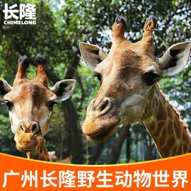 [广州长隆野生动物世界-1日门票]动物园 亲子家庭票 含缆车小火车图片