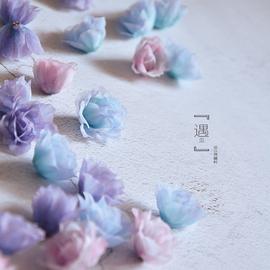 仙!DIY婚纱头饰材料立体花朵晚礼服花片辅料 仿真彩色欧根纱花瓣图片