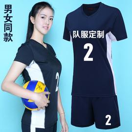 速干排球服男女款套装气排球衣比赛训练透气排球队服定制团购短袖