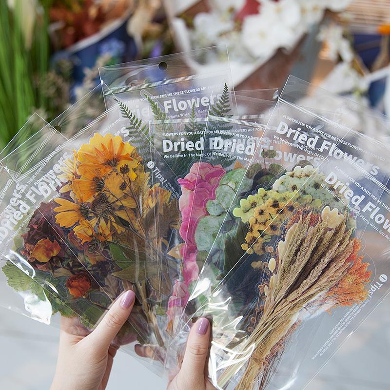 PET大贴纸包 周末花店植物透明防水日记平板装饰图案手帐素材贴画
