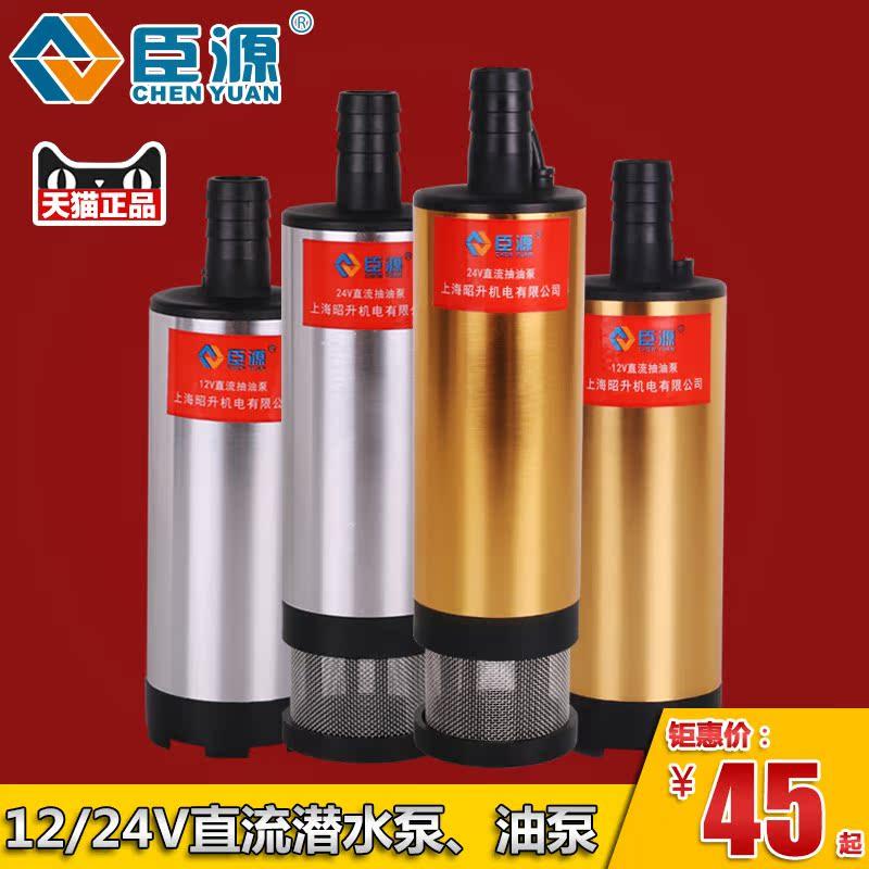 臣源便捷式12V24V直流潛水泵車載抽油泵電動輸油小油泵