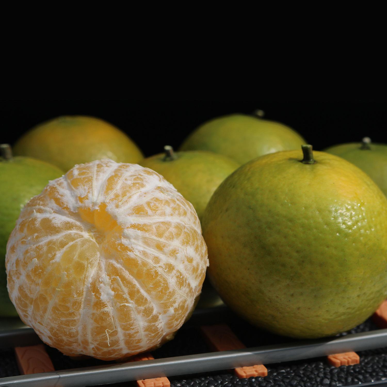 广西皇帝柑贡柑新鲜现摘水果10斤柑橘桔子非德庆沃柑砂糖橘冰糖橙
