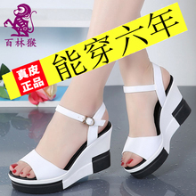 2020 new sandals women's summer high-heeled flip flops student leisure leather fish mouth slope heel muffin bottom women's slippers