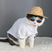 Straw Hat For Cats