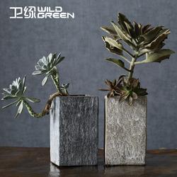 花卉室内水泥方形老桩多肉植物花盆艺术创意仿石肉肉盆栽花插花瓶