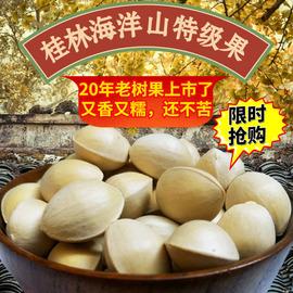 新鲜大白果特级带壳银杏果5斤桂林海洋乡老树生百果 白果仁饱满