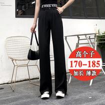 高个子冰丝180加长版时尚西装裤175直筒宽松字母高腰两穿阔腿裤薄